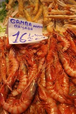 Prawns in Mercado Central (Central Market), Valencia, Spain, Europe by Neil Farrin