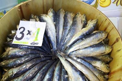 Sardines in Mercado Central (Central Market), Valencia, Spain, Europe by Neil Farrin
