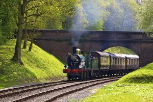 Steam Train on Bluebell Railway, Horsted Keynes, West Sussex, England, United Kingdom, Europe by Neil Farrin