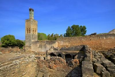 The Ruins of Chellah with Minaret, Rabat, Morocco, North Africa, Africa by Neil Farrin