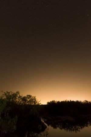 The Night Sky at Everglades National Parkõs Anhinga Trail, with Miamiõs City Glow on the Horizon by Neil Losin