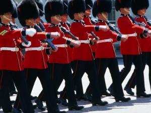 Coldstream Guards on Parade, London, United Kingdom by Neil Setchfield