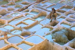 Tanneries, Fez, Morocco, North Africa, Africa by Neil