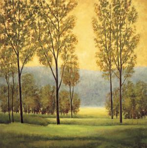 Misty Morning I by Neil Thomas