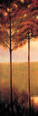 Through the Woods I by Neil Thomas