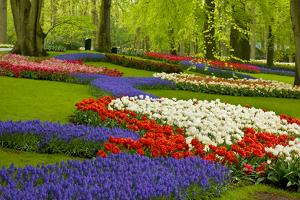 Spring Flowers in Holland Garden by neirfy