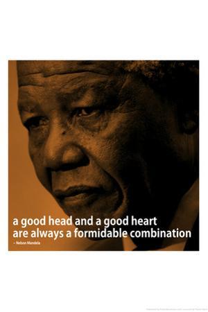 Nelson Mandela Quote iNspire 2 Motivational Plastic Sign