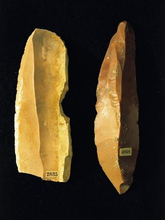 https://imgc.allpostersimages.com/img/posters/neolithic-scrapers-from-umbria-region-italy_u-L-POPCTQ0.jpg?artPerspective=n