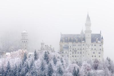 https://imgc.allpostersimages.com/img/posters/neuschwanstein-castle-in-winter-fussen-bavaria-germany-europe_u-L-PWFDU70.jpg?artPerspective=n