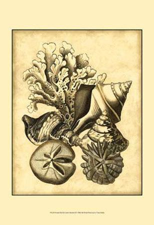 https://imgc.allpostersimages.com/img/posters/neutral-shell-and-coral-collection-ii_u-L-F18H0X0.jpg?artPerspective=n