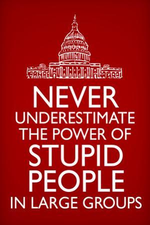Never Underestimate Stupid People in Large Groups Plastic Sign