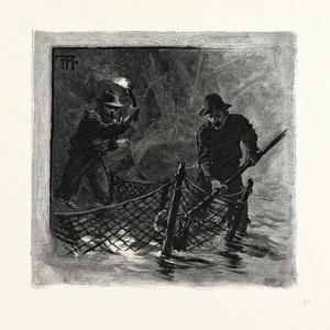 New Brunswick, Emptying Salmon Nets by Torchlight, Canada, Nineteenth Century