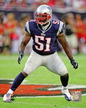 New England Patriots - Jerod Mayo Photo