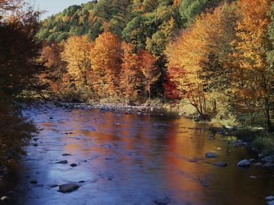 https://imgc.allpostersimages.com/img/posters/new-hampshire-white-mts-nf-sugar-maples-and-wild-ammonoosuc-river_u-L-PU3DV10.jpg?p=0
