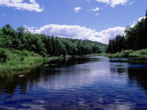 New York, Adirondack State Park, Adirondack Mountains, Raquette River Near Long Lake