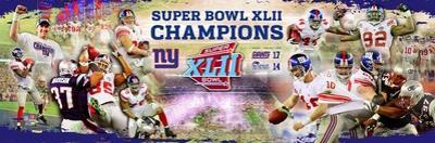 New York Giants Panoramic Photo