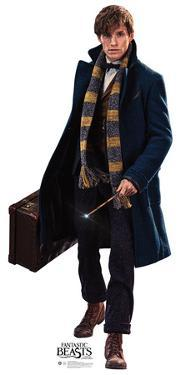 Newt Scamander - Fantastic Beasts and Where to Find Them