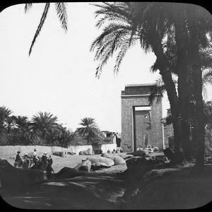 Avenue of Sphinxes, Karnak, Egypt, C1890 by Newton & Co