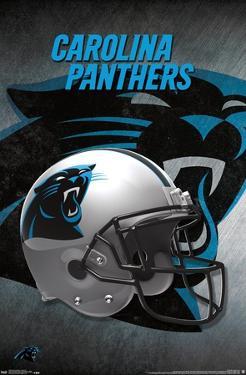 NFL Carolina Panthers - Helmet 16