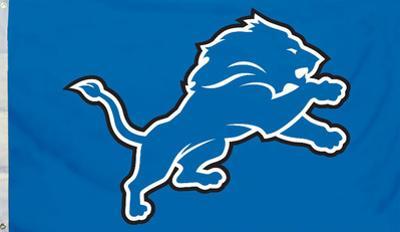 NFL Detroit Lions Flag with Grommets