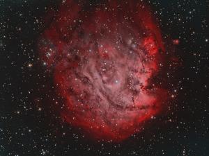 Ngc 2174, the Monkey Head Nebula with Ic 2159 Nebulosity