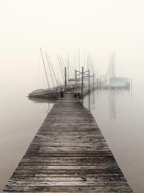 Harbor Fog by Nicholas Bell