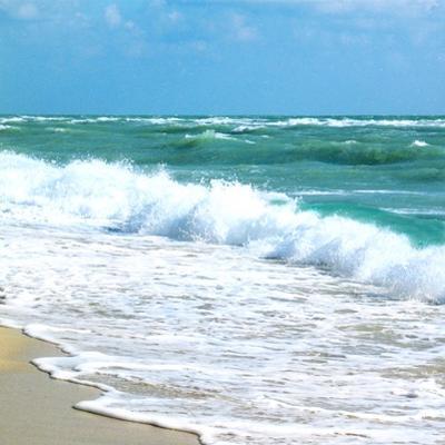 Teal Surf I by Nicholas Biscardi