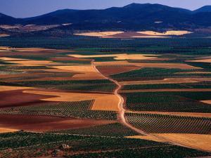 Plains of La Mancha, Spain by Nicholas Pavloff