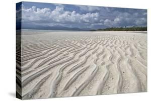 Ripples in sand, inter-tidal sands on coast, Palawan Island, Philippines by Nicholas & Sherry Lu Aldridge