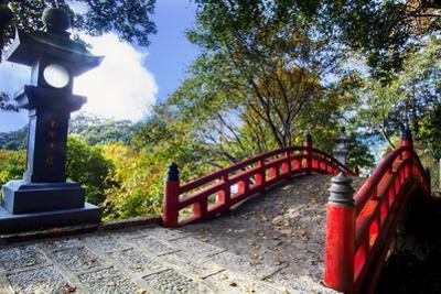 Beautiful Sakura in the Temple by NicholasHan