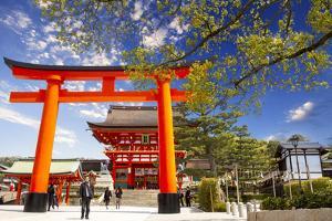 Fushimi Inari Taisha by NicholasHan