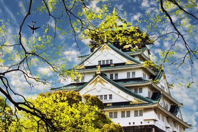 Osaka Castle in Osaka, Japan. by NicholasHan