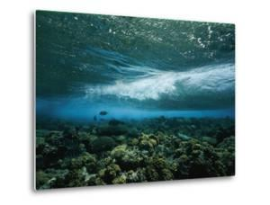 Underwater View of a Wave Breaking over a Reef by Nick Caloyianis