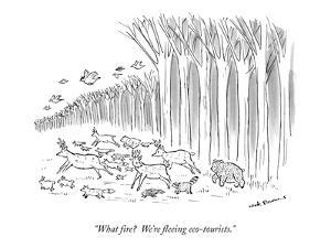 """What fire?  We're fleeing eco-tourists."" - New Yorker Cartoon by Nick Downes"