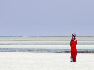 Tanzania, Zanzibar, Unguja, Pongwe, a Lady Looks Out to Sea by Nick Ledger