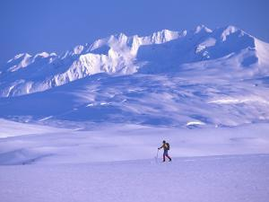 Cross-Country Skier in an Arctic Landscape, Yukon Mountains, Canada by Nick Norman