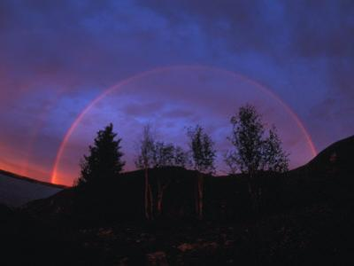 Rainbow over Trees, Northwest Territories, Canada by Nick Norman