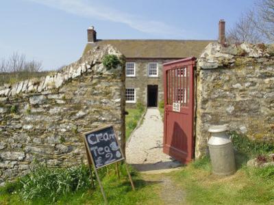 Cream Teas Sign Outside Cornish Farmhouse, Near Fowey, Cornwall, England, UK