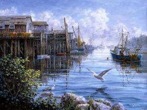 Bird Eye View by Nicky Boehme