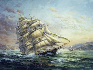 Clipper Ship Surprise by Nicky Boehme