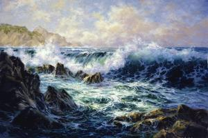 Morning Surf by Nicky Boehme