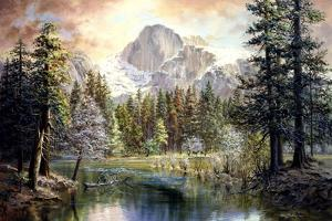 Natures Wonderland by Nicky Boehme