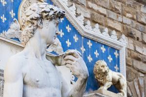 David by Michelangelo, Palazzo Vecchio'S, Firenze, Tuscany, Italy by Nico Tondini