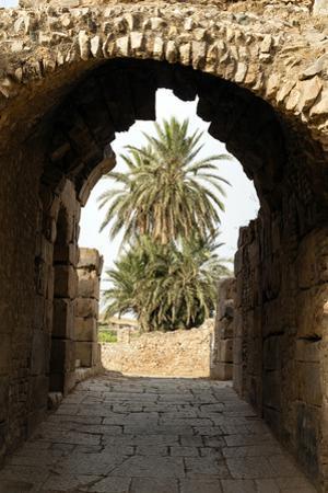 Entrance to the Theater, Roman ruins of Bulla Regia, Tunisia by Nico Tondini
