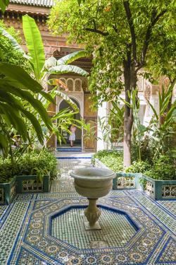Garden of the 19th Century Bahia Palace, A. Marrakech, Morocco by Nico Tondini