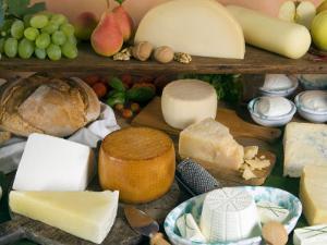 Italian Cheeses, Italy by Nico Tondini