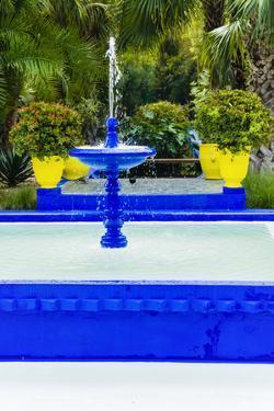 Jardin Majorelle, Marrakech, Morocco by Nico Tondini