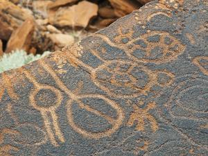 Petroglyphs or Rock Engravings, Twyfelfontein, UNESCO World Heritage Site, Damaraland, Namibia by Nico Tondini