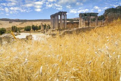 Roman ruins, Temple of Juno Caelestis, Dougga Archaeological Site, Tunisia by Nico Tondini