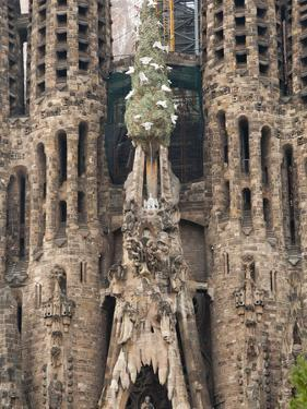 Sagrada Familia Cathedral by Gaudi, UNESCO World Heritage Site, Barcelona, Catalunya, Spain by Nico Tondini